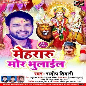 Mehraru Mor Bhulail Bhakti Song Mp3 Download Bhakti Song Songs Mp3 Song