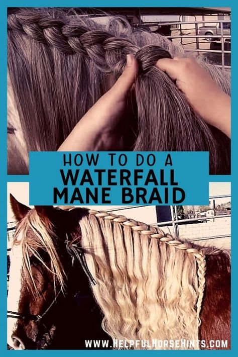 Mane Braid Tutorial Learn how to do a waterfall horse mane braid on your horse.Learn how to do a waterfall horse mane braid on your horse. Horse Mane Braids, Horse Hair Braiding, Tail Braids, Tight Braids, Horse Tail, Horse Riding Tips, Horse Care Tips, Horse Facts, Horse Costumes