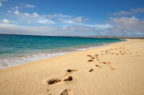 Footprints at Papohaku #Beach #gohawaii