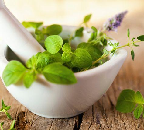 Natürliche Helfer bei Erkältungsbeschwerden Bestimmte Wirkstoffe aus Pflanzen lindern die typischen Erkältungsbeschwerden auf sanfte Weise: Sie verflüssigen das Sekret, damit wir es besser loswerden können. Danke dafür!