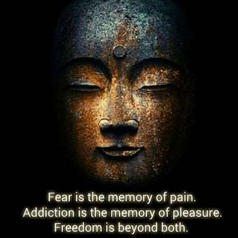 """Quotes To Hopefully Inspire✨✨ on Instagram: """"#fear #addiction #freedom #pain #pleasure #quote #quotesandsayings #quotestoliveby #quotesdaily #quotesaboutlife #quotestagram…"""""""
