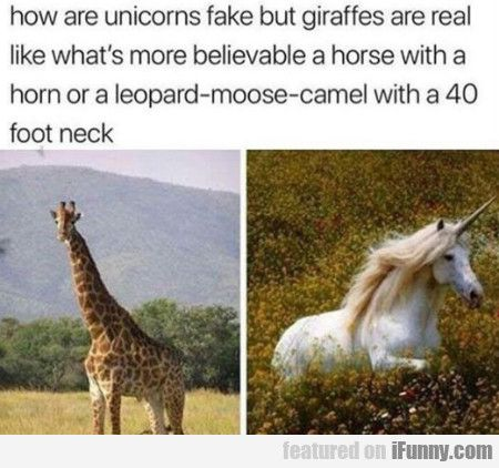 How Are Unicorns Fake But Giraffes Are Real? #Funny-Pics  http://www.flaproductions.net/funny-pics/how-are… | Really funny memes,  Funny memes, Funny relatable memes