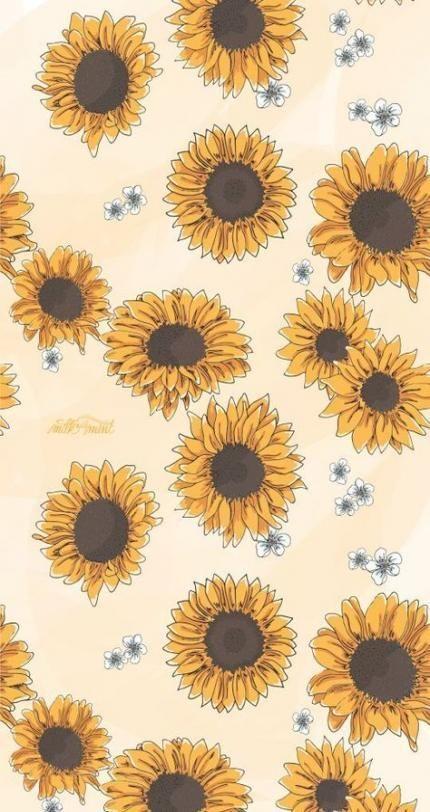 23 Ideas Sunflower Aesthetic Wallpaper Desktop For 2019 Sunflower Aesthetic Casey Blog Sunflower Wallpaper Sunflower Iphone Wallpaper Iphone Wallpaper Vsco Cool sunflower hd wallpaper for iphone