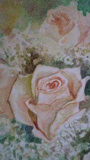 Rose e gypsophila per album di nozze