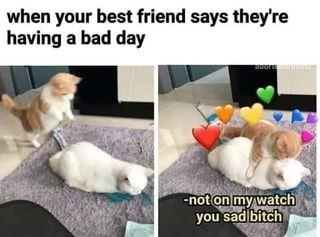 When Your Best Friend Says They Re Having A Bad Day Ifunny Funny Best Friend Memes When Your Best Friend Bad Day Humor