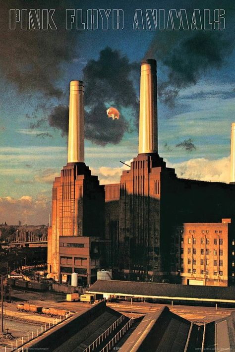 Pink Floyd - Animals - Wall Poster