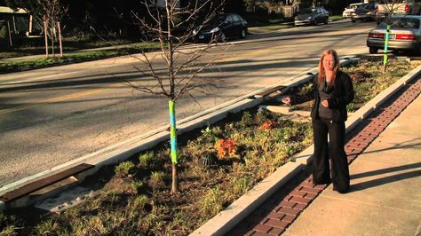 This video by GreenTreks Network shows how the Philadelphia Water Department (PWD) is using a variety of innovations to protect waterways from polluted rainwater. The department is every bit as focused on meeting community needs as they are on keeping stormwater out of rivers and streams. When residents of the Queen Lane section of the city expressed concern about speeding cars during public meetings, the PWD team designed a stormwater management system to control runoff -- and cars.