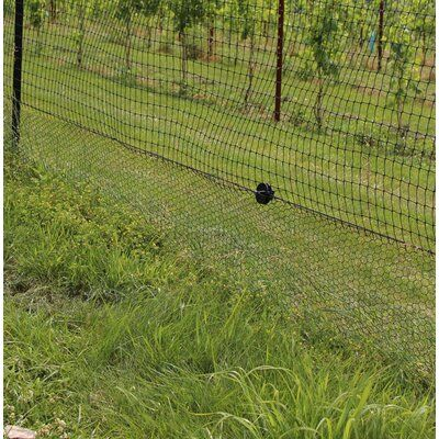 Allfenz 4 Ft X 50 Ft 16 Gauge Black Vinyl Coated Welded Wire Fence With 1 In X 1 In Mesh Ps480501116bl The Home Depot In 2020 Welded Wire Fence Wire Fence Fencer Wire