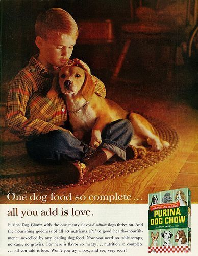 Pin By J E Hart On Dogs In Advertising Purina Dog Chow Dogs