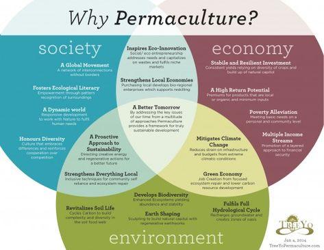 Terminologies in Urban Theory | Urban principles | Pinterest ...