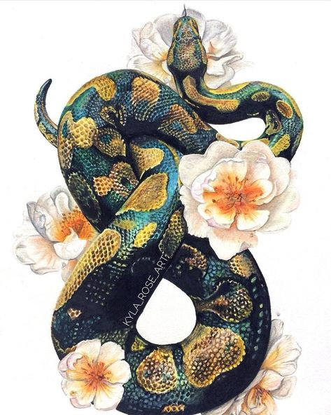 Ball python and rose print This is a print of my original color pencil drawing . - Ball python and rose print This is a print of my original color pencil drawing … - Art Drawings, Kawaii Drawings, Art, Art Prints, Renaissance Art, Snake Art, Color Pencil Drawing, Animal Drawings, Flower Drawing