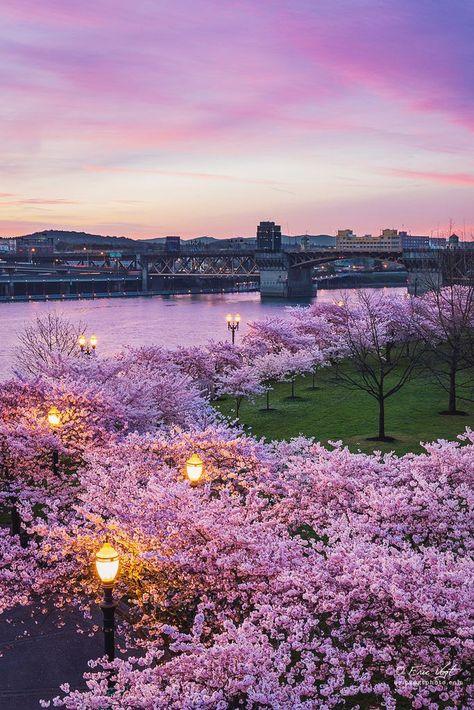 Cityscape,Spring, Oregon, USA vacation move live www.TeamBurch.com Oregon Real Estate