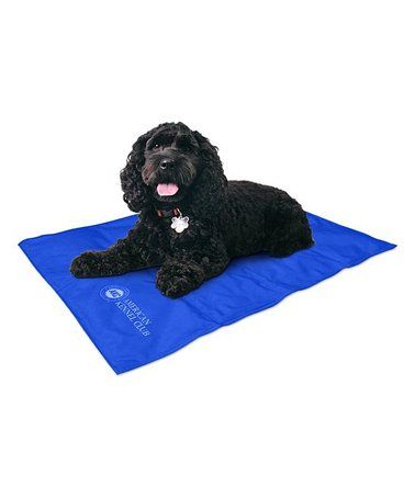 Loving This Blue Pet Cooling Pad On Zulily Zulilyfinds Pet Cooling Pad Pets American Kennel Club