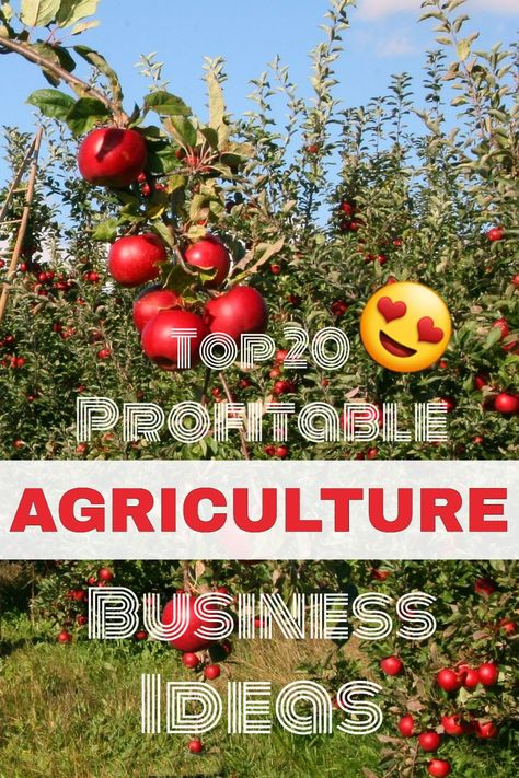 Top 20 profitable agriculture startup ideas in india