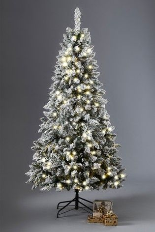 Buy 250 Led Vermont Snowy 6ft Christmas Tree From The Next Uk Online Shop 6ft Christmas Tree Christmas Tree Snowy Christmas Tree