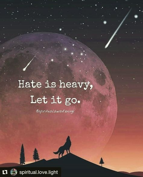 List Of Pinterest Hate Is Heavy Let It Go Life Ideas Hate Is Heavy