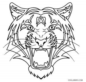 Free Printable Tiger Coloring Pages For Kids Cool2bkids Coloring Pages Animal Coloring Pages Tiger Drawing