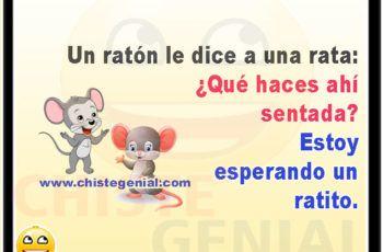 Un Ratón Le Dice A Una Rata Qué Haces Ahí Sentada Chistes Para Niños Fictional Characters Disney Characters Character