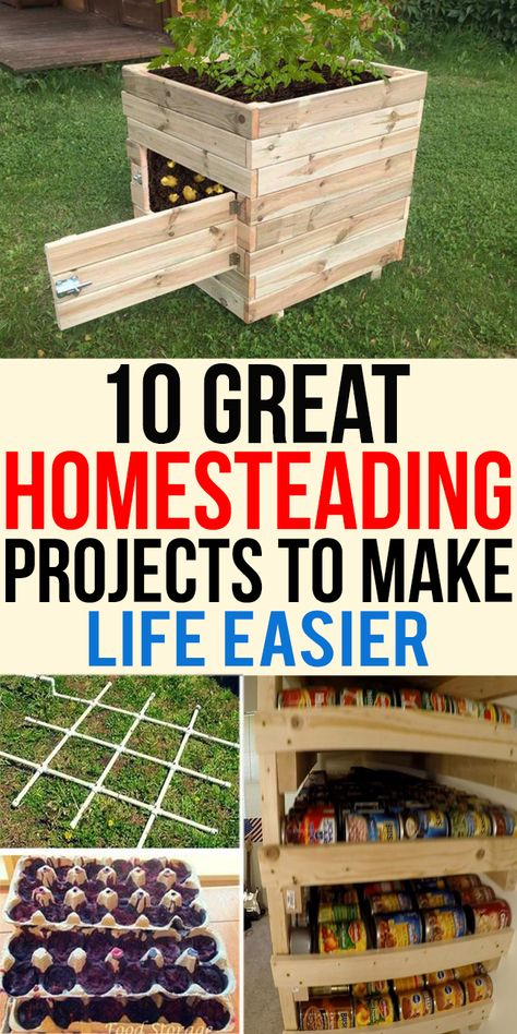 10 Great Homesteading Projects To Make Life Easier