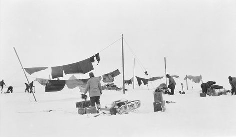 e541caad0b In what may be one of history's most famous successful failures, explorer  Sir Ernest Shackleton and 27 other men set out on the Imperial Trans- Antarctic ...