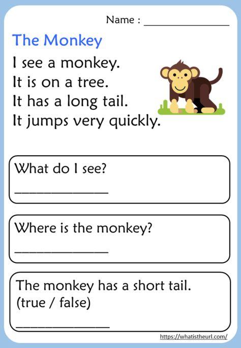 Kindergarten Reading Comprehension Passages - Your Home Teacher