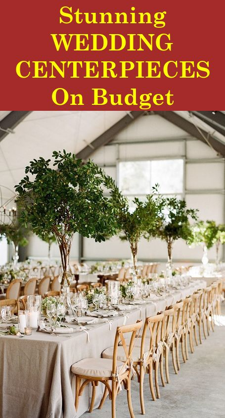 Bulk Glass Wedding Vases How To Pick The Best And Where To Get Them Flower Centerpieces Wedding Tall Wedding Centerpieces Green Wedding Centerpieces