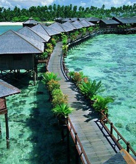 Vanuatu dating website