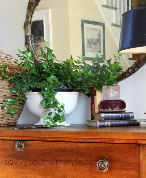 Savvy Southern Style: Starting Fresh....creating a vignette