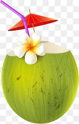 Cartoon Coconut Juice Cartoon Clipart Coconut Clipart Summer Drink Png Transparent Clipart Image And Psd File For Free Download Coconut Vector Summer Drinks Cartoon Clip Art