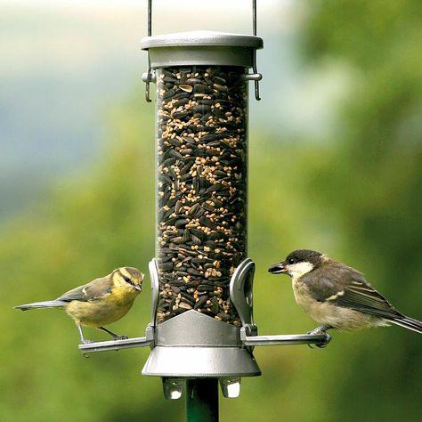 CJ Wildlife Table Seed for Garden Birds