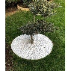 Bordure De Jardin Pas Cher En Acier Corten Rouille Design