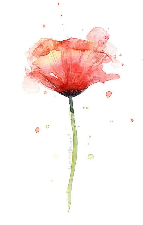 Red Poppy Watercolor Flower Art Print Coquelicots Poppy Wall