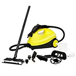 7 Best Multi Purpose Steam Cleaners 2020 With Images Steam