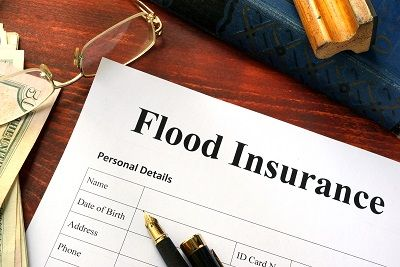 Health Insurance Expert Underwriting Claims Obamacare Flood