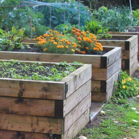 Hochbeet Bauen Anleitung Und Video Plantura In 2020 Above Ground Garden Benefits Of Gardening Vegetable Garden Beds