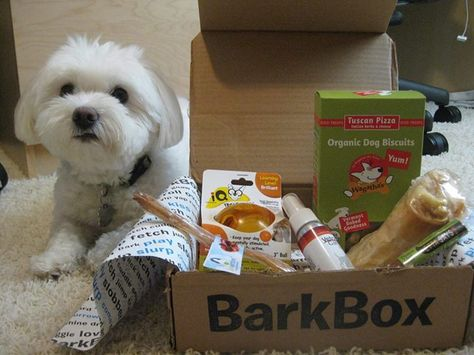 It S Not A Party Unless You Serve Hot Dogs And Barkbox Makes