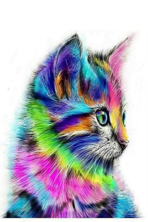 Multicolor Kitten #PaintByNumbers