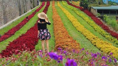 Harga Tiket Masuk Dan Rute Lokasi Rainbow Garden Lembang Bandung Rainbow Garden Lembang Garden