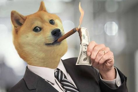 Who Is Still Holding Thumbs Up 🙌🙌🙌💎💎 : dogecoin