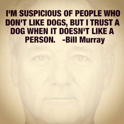 Top quotes by Bill Murray-https://s-media-cache-ak0.pinimg.com/474x/31/ed/23/31ed230e62a7440faaefb8ce87ef858a.jpg
