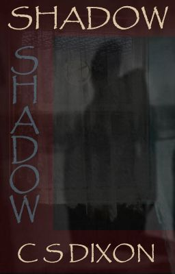 Shadow Psychological Horror Mystery Shadow Psychological Horror Great Short Stories Indie Author