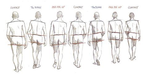 Image Result For Walking Back View Reference Walking Poses Animation Reference Walking Animation