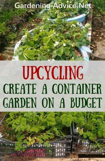 56 Ideas Garden Container Upcycled Garden Container Gardening