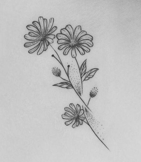 Aster Flower Tattoo Aster Flower Tattoos Flower Tattoo Shape Tattoo