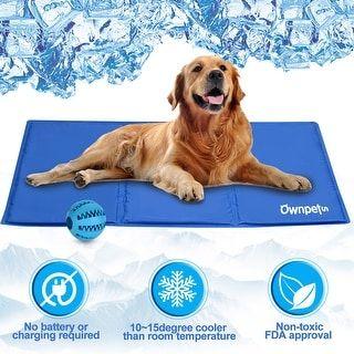 Pin On Animal Care Training