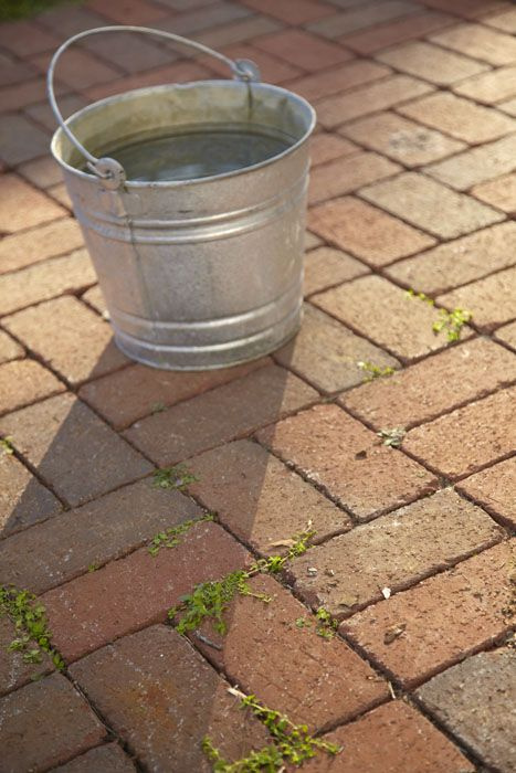 Nice How To Clean Your Brick Patio