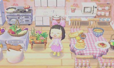 Animal Crossing New Leaf Kitchen Ideas - Kitchen Ideas on Animal Crossing Kitchen Ideas  id=59602