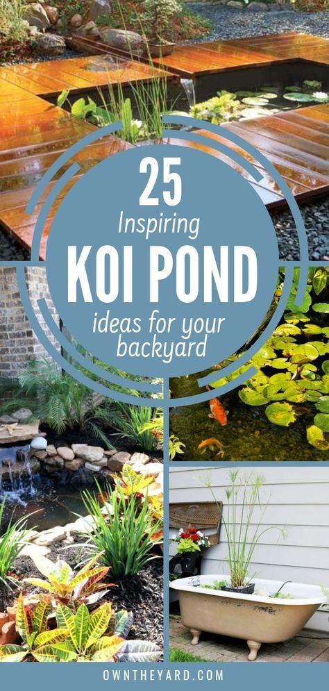 Images and design ideas for koi ponds. #koipond #koipondideas #backyardideas #backyardpond #fishpond