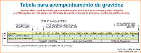 Tabelinha Semana X Meses Agosto De 2013 Semanas Da Gestacao