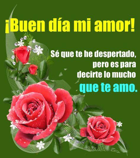 Poemas De Buenos Dias Mi Amor Te Amo Buen Dia Mi Amor Buenos Dias Amor Mensajes Buenos Dias Amor